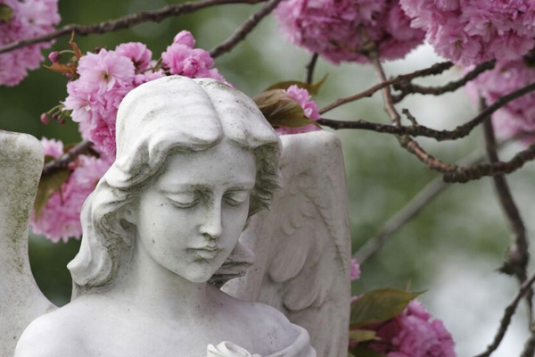 Brewer Sons Funeral Homes Cremation Services Brooksville
